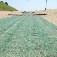 Erosion-Control-Miller-Seed-unspecified-11