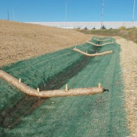 Erosion-Control-Miller-Seed-unspecified-14