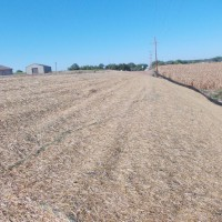 Erosion-Control-Miller-Seed-unspecified-3