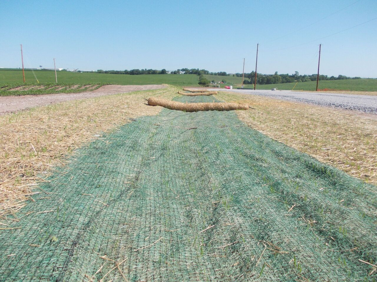 Erosion Control Miller Seed Unspecified 4 Miller Seed