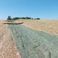 Erosion-Control-Miller-Seed-unspecified-5